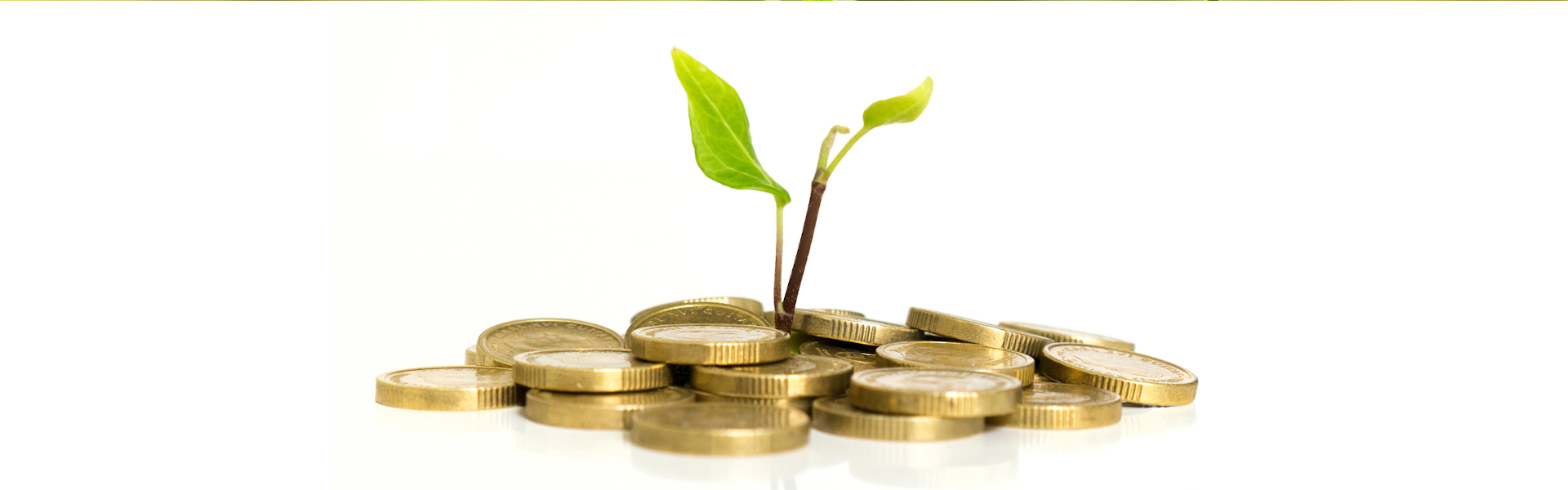Investments - Do you need independent advice?